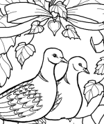 Two Turtle Doves Coloring Page